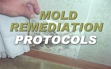 Mold Remediation Protocols Online Training & Certification