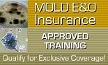 Mold Training - Approved by Insurance